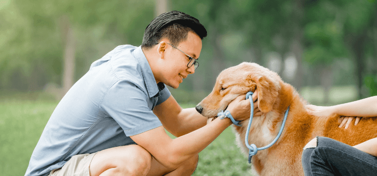 Wellness Care for Dogs
